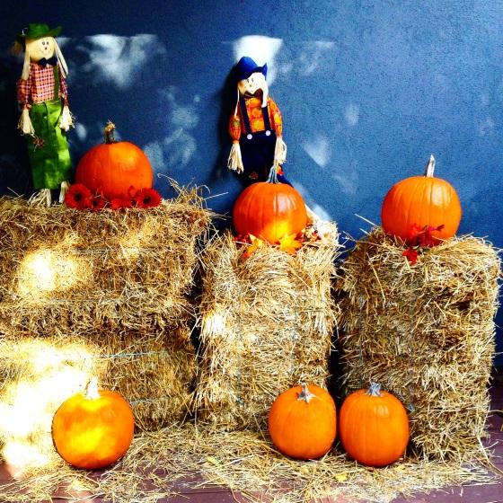 """<img src=""""pumpkin-patch.jpg"""" alt=""""Pumpkin Patch"""" />"""